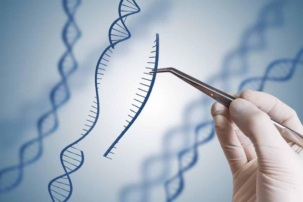 Gene editing, gloved hand using tweezers to manipulate DNA strand