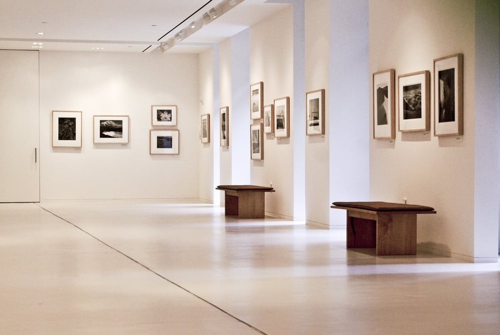 Empty art gallery with benches