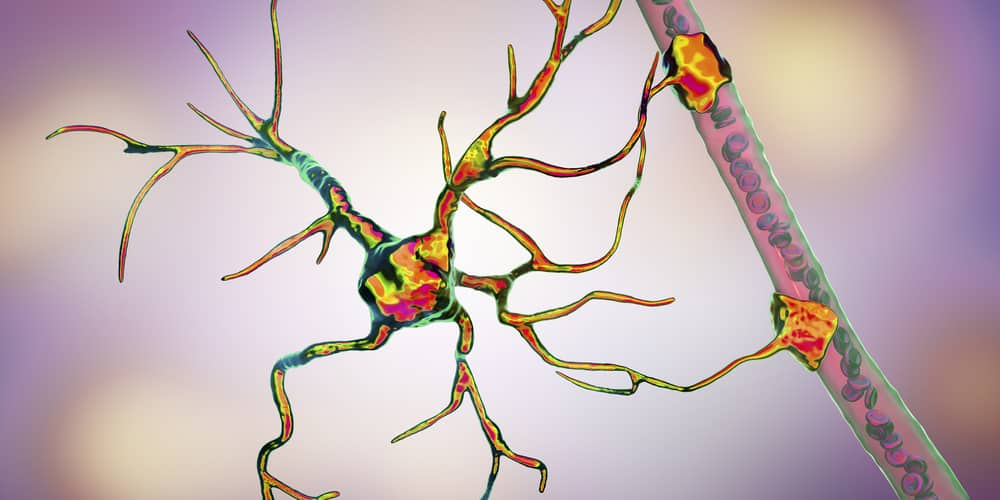 Astrocyte and blood vessel graphic illlustration