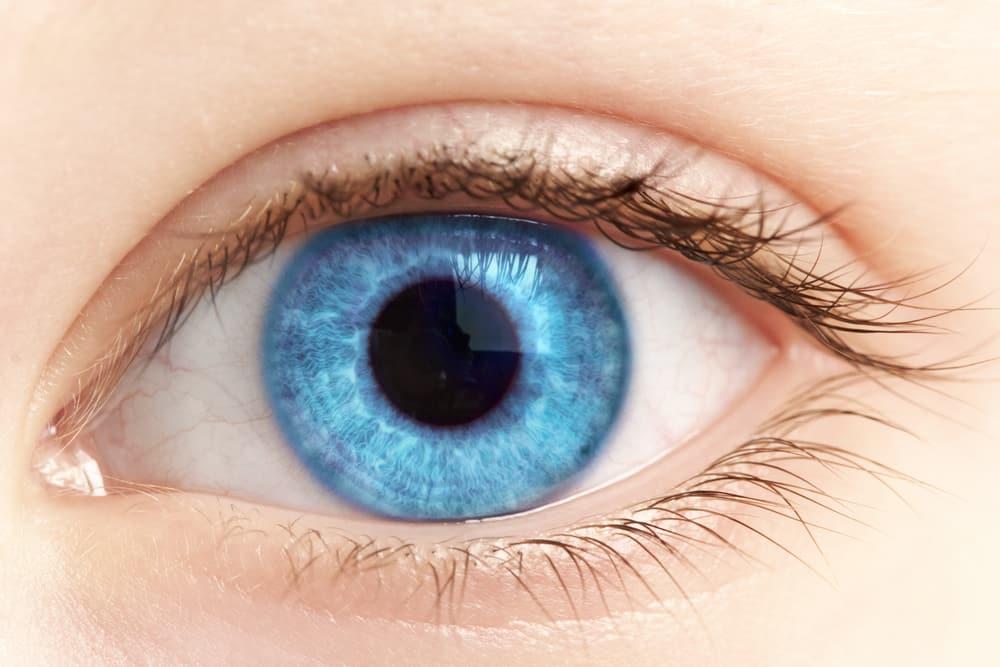 Close-up of bright blue eye
